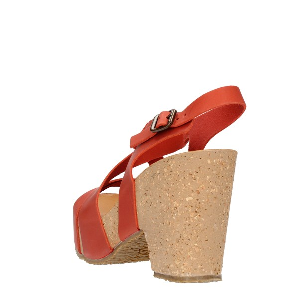 Bio Natura  With wedge Red